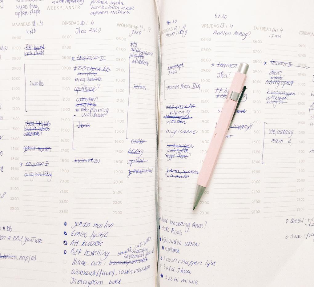 structuurjunkie leren plannen