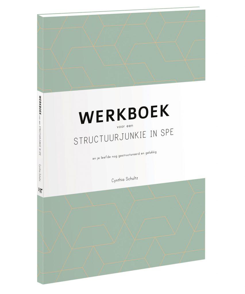 structuurjunkie werkboek
