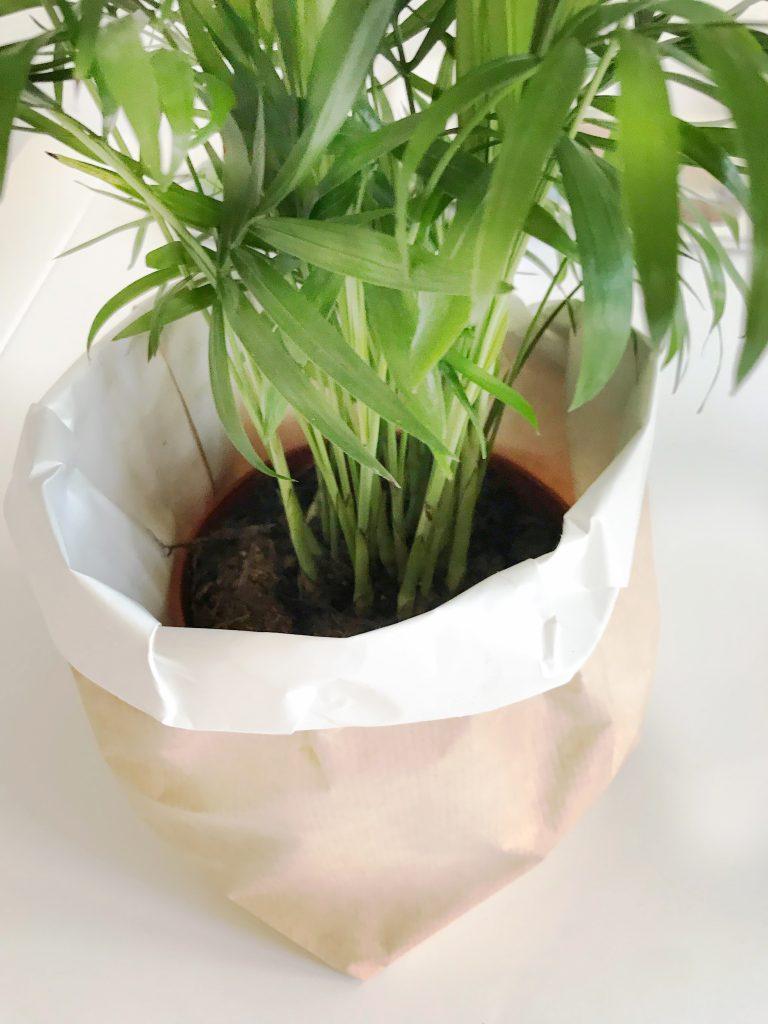 plantenzak van papier maken dit