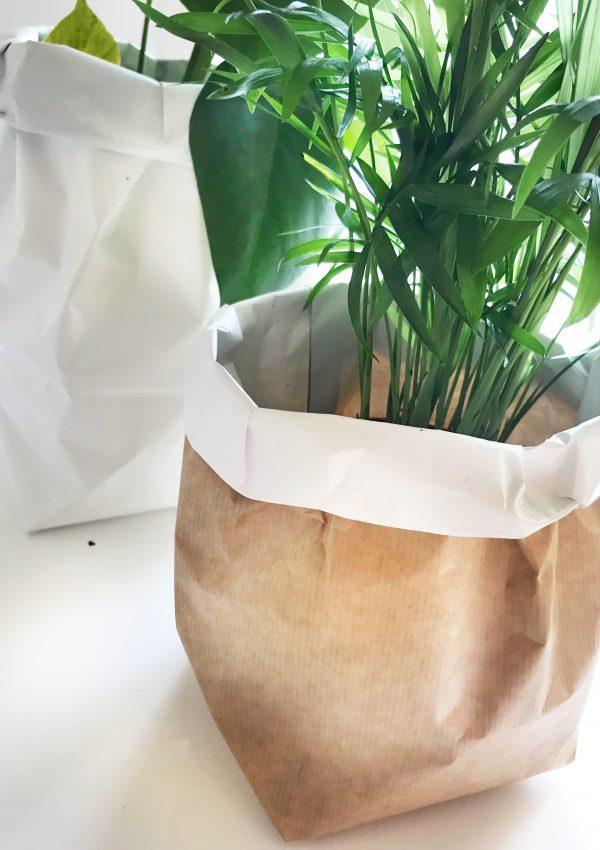 DIY: plantenzak van papier maken