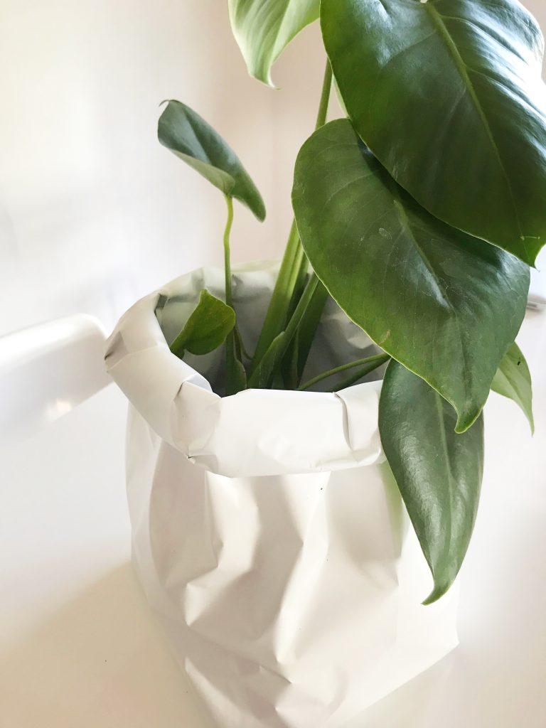 plantenzak van papier