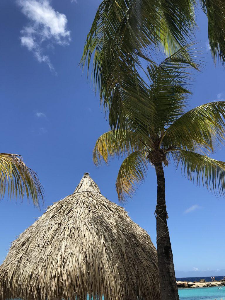 tips tegen vakantiestress